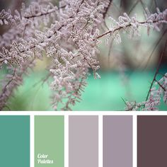 brown-pink, color match, color solution for home, dark lilac, emerald, light green, light lilac, lilac-violet shades, pale light green, shades of lilac, Syringa color, turquoise.