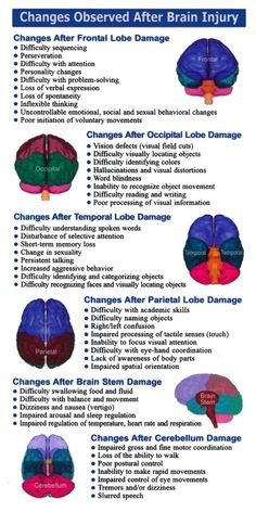 Visit the post for more. Frontal Lobe Damage, Epilepsy Awareness Month, Radiology Student, Occipital Lobe, Medicine Student, Therapy Quotes, Educational Psychology, Medical Anatomy, Brain Science