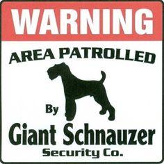 Giant Sign - giant-schnauzer Fan Art