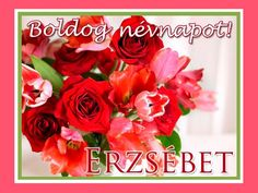 Boldog névnapot, Erzsébet! Name Day, Lol So True, Erika, Rose, Birthday, Flowers, Picasa, Pink, Birthdays