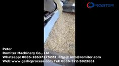 Full Automatic Multi-Belt Dryer Oven for Dehydrated Garlic Slice Flake