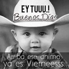 Jw News, Cute Spanish Quotes, Friday Cat, Good Night Friends, Baby Faces, Funny Messages, Love Poems, Good Morning Quotes, Happy Thoughts