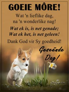 Good Morning Boyfriend Quotes, Good Morning Quotes, Afrikaanse Quotes, Goeie Nag, Goeie More, Morning Inspirational Quotes, Good Morning Wishes, Best Quotes, Verses