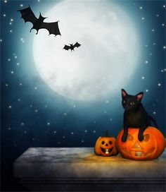 5x7ft LFEEY Vinyl Thin Photography Background Halloween Full Moon Bats Wildcat Pumpkin Lantern Scene for Photo Backdrop Customizable Studio Props -- Awesome products selected by Anna Churchill