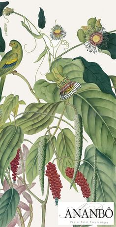 Ananbô: Andaman – Collection 2016 Source by Avarevu Scenic Wallpaper, Fabric Wallpaper, Wall Wallpaper, Botanical Wallpaper, Botanical Illustration, Botanical Prints, Estilo Tropical, Wall Murals, Wall Art