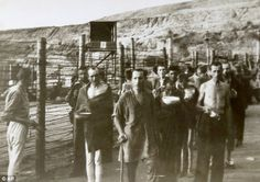 Horrors of war: One of the set of 16 photographs showing survivors at what is believed to be the Nazi Mauthausen concentration camp
