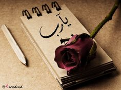 Ya RABB Wallpaper Notebook, Hd Wallpaper, Wallpapers, Allah Calligraphy, Be Your Own Kind Of Beautiful, Romantic Roses, Image Hd, Still Life, Red Roses