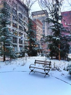 Early morning - Washington Square Park, New York City (photo by Walking Off the Big Apple)