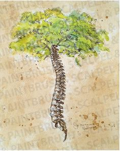 11 Arbor Vitae tree of life spine tree creative anatomy illustration chiropractic art watercolor print Chiropractic Quotes, Chiropractic Clinic, Family Chiropractic, Chiropractic Wellness, Chiropractic Therapy, Chiropractic Office Design, Human Spine, Clinic Design, Medical Art