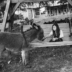 Katie Boyanton ~ Only Donkeys - Just a pretty picture of my girl and April, our baby jenny. ❤️