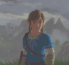 This photo just looks amazing! The Legend Of Zelda, Legend Of Zelda Memes, Legend Of Zelda Breath, Ben Drowned, Monster High Boys, Zelda Hyrule Warriors, Resident Evil, Link Zelda, Precious Children