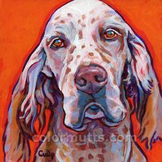 Red and White ENGLISH SETTER Dog Original Portrait Art Painting 6x6 by Lynn Culp