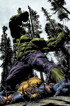 The Hulk vs Wolverine by Mike Deodato Jr.