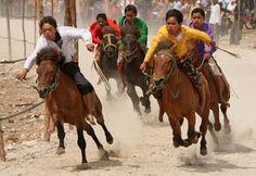 This sport is called pacuan kuda sumatra