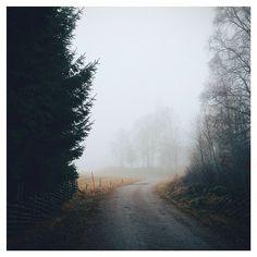 foggy landscape photography