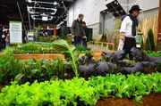 Urban Edible Garden is a collaboration of the Association of Northwest Designers and is displayed at the Yard, Garden & Patio Show, Feb. 27 to March 1, at the Oregon Convention Center in Portland.