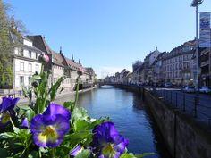 Strasbourg 22