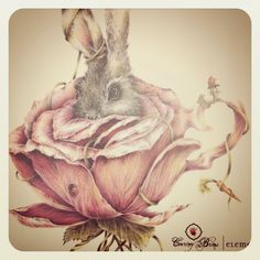 Rabbit in a tea cup illustration by Courtney Brims