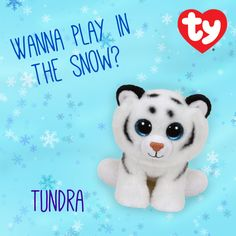 Tundra the Classic Beanie Baby!