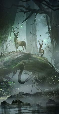 beautiful art 51 Enigmatic Forest Concept Art That Will Amaze You Fantasy Places, Fantasy World, Fantasy Artwork, Digital Art Fantasy, Fantasy Paintings, Digital Paintings, Fantasy Forest, Forest Art, Forest Drawing