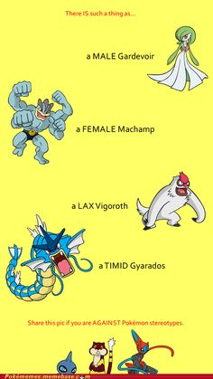Pokémon Stereotypes: END THE MADNESS!