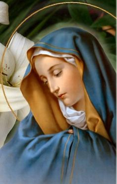 Novena to Our Lady of Sorrows March 2015 to March 2015 Feast March 27 Blessed Virgin our Mother Mary Immaculate Religious Pictures, Religious Icons, Blessed Mother Mary, Blessed Virgin Mary, Catholic Prayers, Catholic Art, Our Lady Of Sorrows, Prayers For Children, Queen Of Heaven