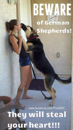 "Click visit site and Check out Cool ""German Shepherd"" T-shirts. This website is top-notch. Tip: You can search ""your name"" or ""your favorite shirts"" at search bar on the top."