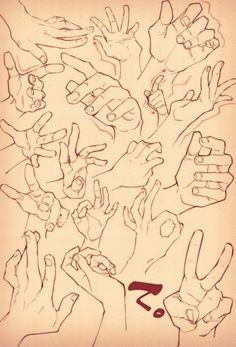 How to draw hands - human anatomy - drawing reference Hand Drawing Reference, Drawing Hands, Body Drawing, Anatomy Drawing, Anatomy Reference, Drawing Skills, Art Reference Poses, Drawing Poses, Drawing Techniques
