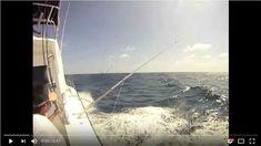 Kianah sportfishing-deep sea fishing cancun video