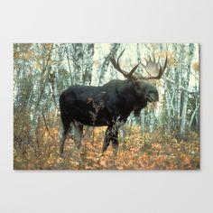 Huge Moose Canvas Print by bravuramedia Latest Generation, Stretcher Bars, Epson, Arctic, Moose Art, Surface, Hardware, Canvas Prints, Bright
