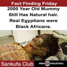 Slavery History, History Education, World History, African Origins, African American History, African American Literature, Egyptian Mummies, Black History Facts, Create Awareness