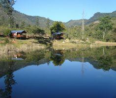 http://www.go2global.co.za/listing.php?id=938&name=Magoebaskloof+Getaway