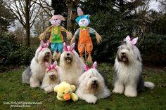 Easter+portret