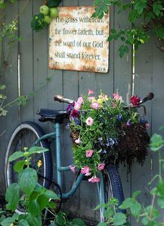 Vintage bicycle with basket turned planter - adorable! Also love the sign above the bike!