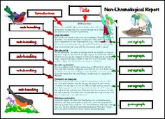 KS1 how to writing a non chronological report, writing non chronological reports ks1 examples of non chronological reports