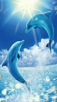Free Animated Dolphins mobile wallpaper by paula on Tehkseven Water Animals, Animals And Pets, Baby Animals, Strange Animals, Dolphin Painting, Dolphin Art, Beautiful Creatures, Animals Beautiful, Dolphin Photos