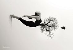 http://www.mymodernmet.com/profiles/blogs/surreal-fantasies