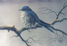 The Inspiration of Painting #8807 BLUEBIRD acrylic art instructional dvd hosted by Master Artist Jerry Yarnell