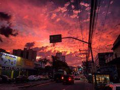 http://floresdoriente.tumblr.com/post/153573781310
