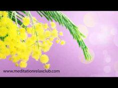 8 Marzo Festa delle Donne 2014: Musica Rilassante per Auguri Festa della...