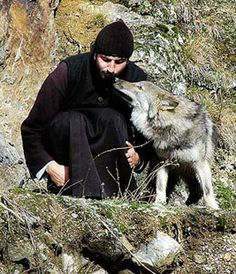 The Monk and the Wolf, Serbia Religion, Christian World, Orthodox Christianity, Orthodox Icons, Serbian, Kirchen, Our Lady, Priest, Catholic