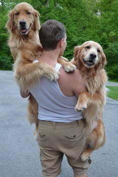 People Carrying Their Big Dogs (or Trying To) [14 Pictures]