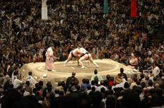 相撲 |じゃまかんばん『日本と世界の伝統写真日記』