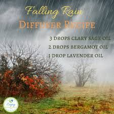 Dread those cold, rainy afternoons? Feel better instantly wiht this falling rain diffuser recipe