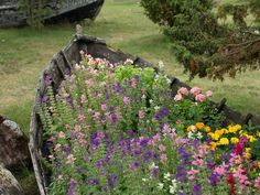 12 Unusual and Upcycled Container Gardens - the boat is my favorite, but I already have collanders picked out too - posted by DIY Network - #upcycle #repurpose #boat #planter #garden #art #unusual #DIY #pot #planting - tå√