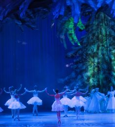 Nutcracker - how many times did we dance the Snow Scene?  :)