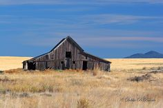 rustic barns   Debbie Blackburn Beierle   all galleries >> Barns > Rustic Barn