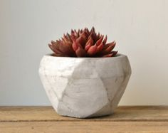 Succulent Planter Hypertufa Mini Pot Rustic Hand by OuthouseLily