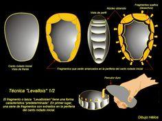Proceso de talla mediante la técnica Levallois Smart Watch, Prehistory, Initials, Rocks, Art, Smartwatch