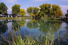 Once located far from downtown, Floyd Lamb Park at Tule Springs is now an open-air island in a sea of development. The park offers visitors respite from city traffic, bustle and noise.
